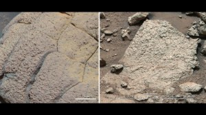 Opportunity Curiosity Mars Rocks